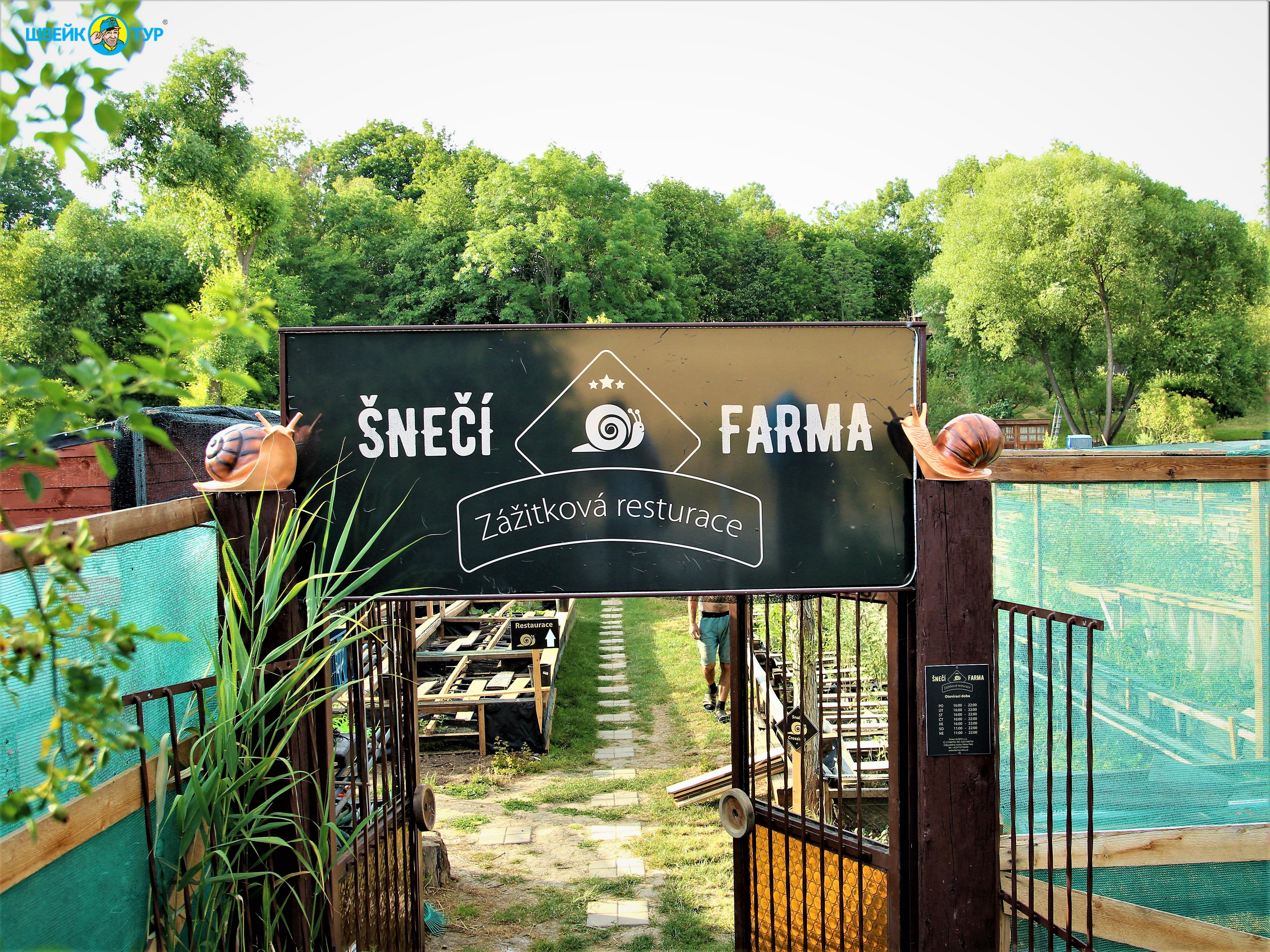 Гастротур: экскурсия на улиточную ферму с дегустацией Швейк Тур